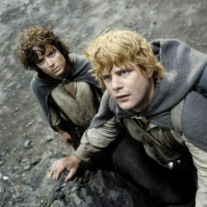 dna-frodo and sam